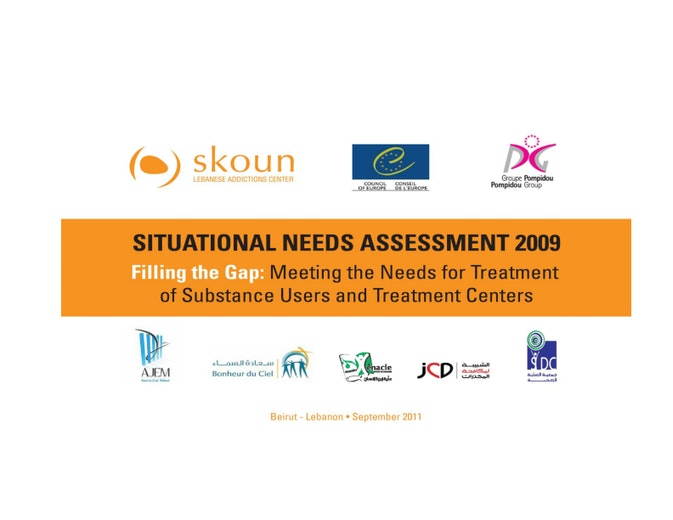 First page of PDF with filename: skoun-situational-needs-assessment-20111114_0.pdf